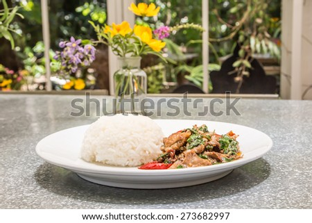 Thai spicy food basil chicken fried with jasmine rice - stock photo