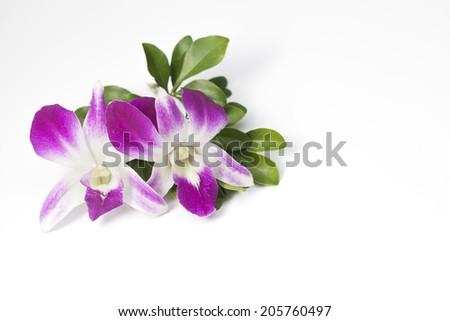 Thai style bouquet on white background - stock photo
