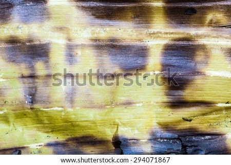 Thai style grill in banana leaf. - stock photo