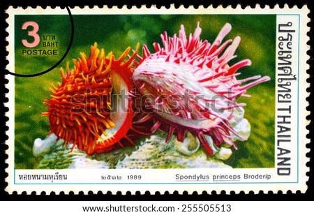 THAILAND - CIRCA 1989 : A stamp printed in Thailand shows image of Spondylus princeps Broderip, circa 1989 - stock photo
