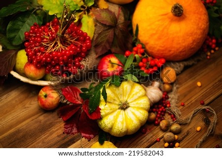 Thanksgiving day autumnal still life - stock photo
