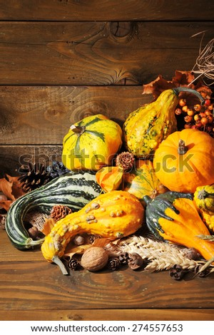 Thanksgiving - different pumpkins with nuts, berries and grain in front of wooden boards - stock photo
