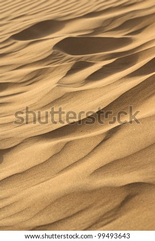 thar desert in India sand dunes - stock photo