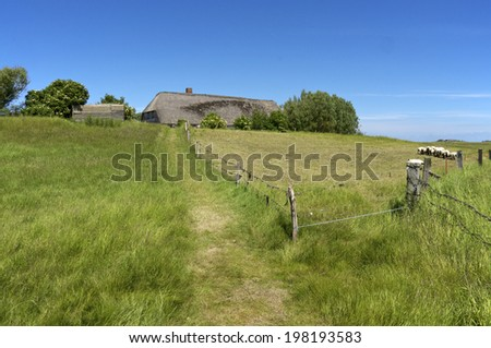 Thatched Houses on the Warft on the Hallig Langeness in north Friesland, a part of north Germany. The Hallig is located in the wadden sea in the north sea - stock photo