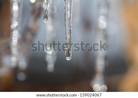 Thawing icicles - stock photo