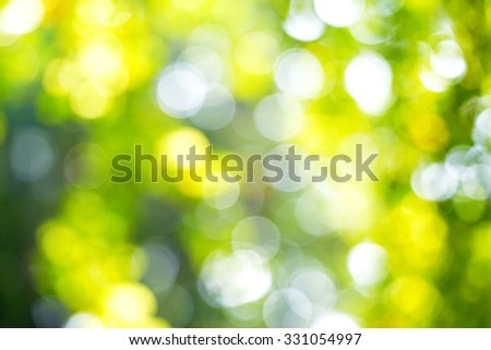 The abstract of green and yellow light bokeh from tree - stock photo