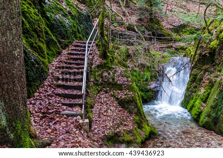 """The age-old staircase and a waterfall in the forest. Wild forest areas in the resort reserve """"Black Forest"""" in Germany - stock photo"""