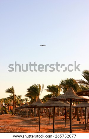 The Aircraft Flies over the Beach.  - stock photo