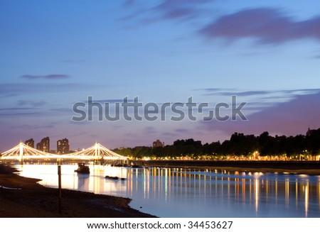 The Albert Bridge at night, London - stock photo
