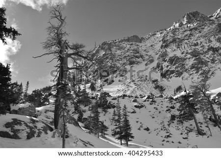 The alpine world of Rocky Mountain National Park - stock photo
