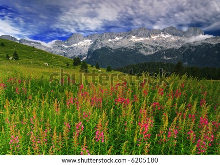 The Alps - stock photo
