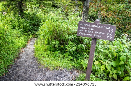 The Appalachian Trail. The Appalachian trail as it approaches Clingmans Dome. At over 6000 ft. this is the highest elevation of the trail within the Great Smoky Mountains National Park.  - stock photo