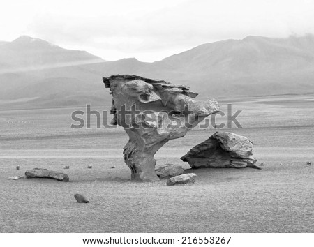 The Arbol de Piedra (Stone Tree) is a volcanic rock formation in the Desierto Siloli in Bolivia (black and white) - stock photo