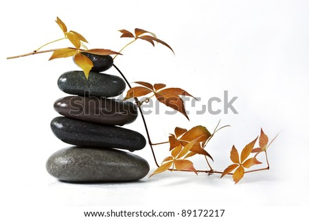 The autumn leaves and stones - stock photo