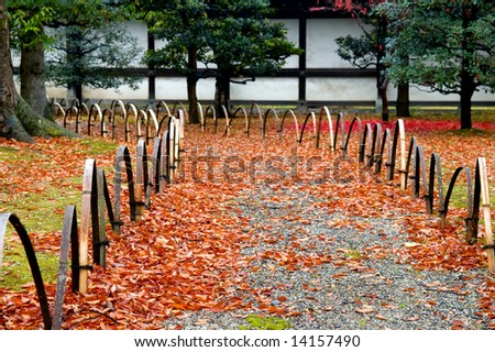 The back yard of Japanese garden, in fall - stock photo