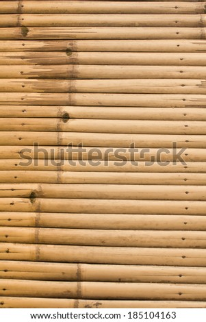 The background from line up of bamboo - stock photo