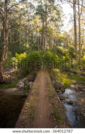 The base of the epic walking and biking track called Delatite River Trail near Mirimbah, Mt Buller in Victoria, Australia - stock photo