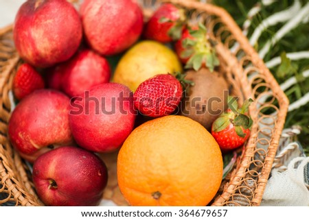 The basket of fresh organic fruits in the garden - stock photo