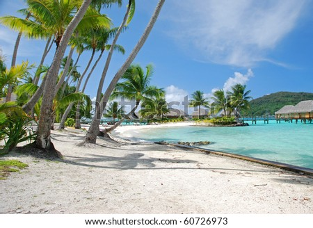 the beach - stock photo