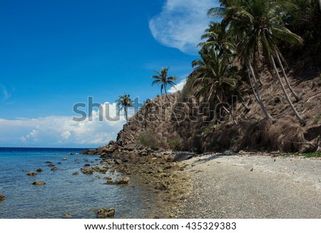 The beach with palm trees, Apo island, Philippines. Tropical island beach in summer sun. Vacation at the tropical island. Exotic place for holiday. Tropical beach with palms image. Empty sand beach - stock photo