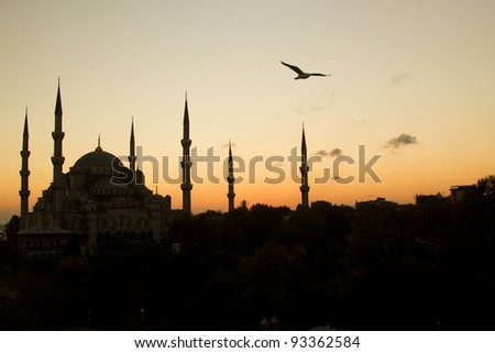 The Beautiful Blue Mosque in Istanbul in sunset scene with a bird in top left corner - stock photo