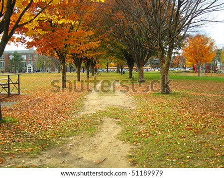 The beautiful Burns Park neighborhood and school, an affluent area of Ann Arbor, Michigan - stock photo