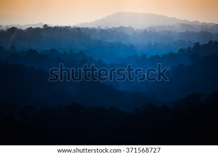 The beautiful dawn in the tropical rain forest, Thailand  - stock photo