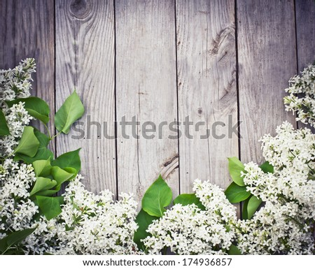 The beautiful lilac on a wooden surface/ Spring flower background - stock photo