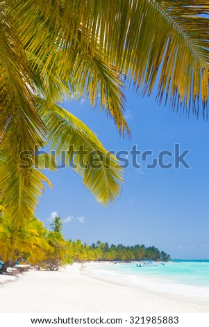 The best tropical palm beach on Saona Island in caribbean area, Dominican Republic - stock photo