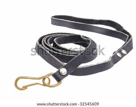 The black leather leash for dogs with a carbine is isolated - stock photo