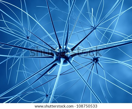 The brain neurons and nervous system - stock photo