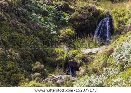 The Bronte Falls on Haworth Moor, West Yorkshire, England. Favorite walking area for famous author Emily Bronte and featured in he books. - stock photo