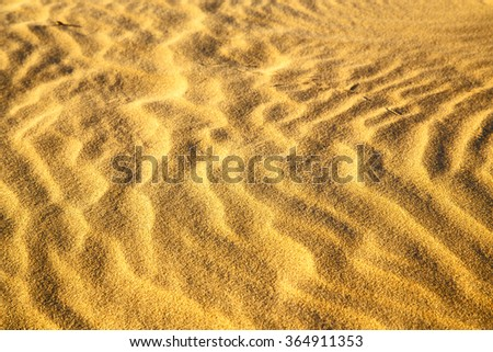the brown sand dune   in the sahara morocco desert  - stock photo