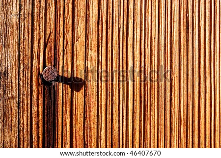 the brown wood texture with nail - stock photo