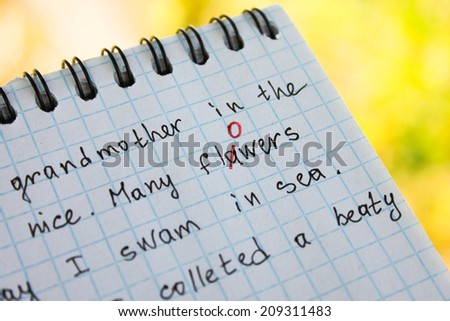 The bug is fixed in red pen in a notebook - stock photo