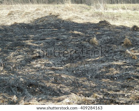 The burning of dry grass - stock photo