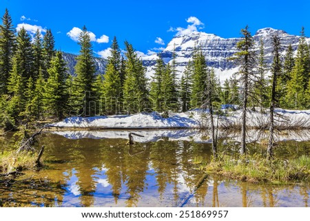 The calm reflective water near Cameron Lake in Waterton Lakes National Park.  The peak of Mount Custer can be seen in the distance. - stock photo