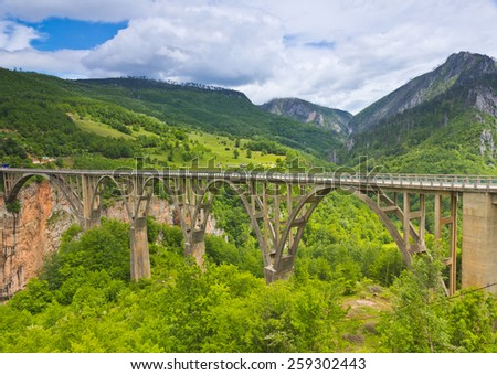 The canyon in the vicinity of the river Tara. Montenegro. - stock photo
