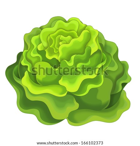 The Cartoon vegetable- illustration for the children - XXL size - stock photo
