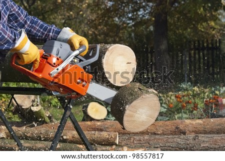 The chainsaw blade cuts the log of wood - stock photo