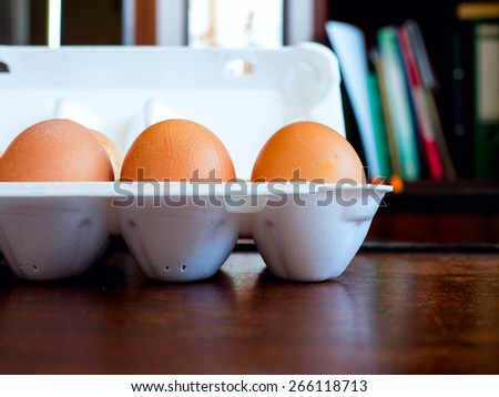 The chicken egg. - stock photo