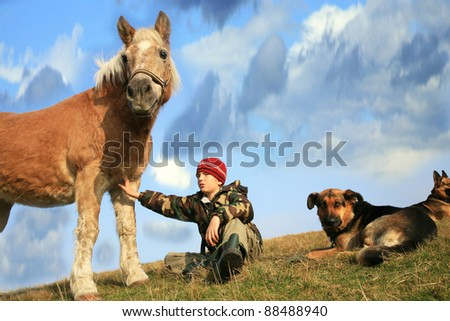 The child and his friends horse and dogs. Happy life in the countryside, the family - stock photo