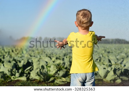 The child on a cabbage field catches water drops  - stock photo