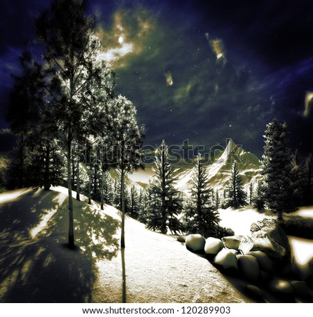 The Christmas, magical forest - artwork - stock photo