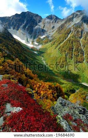 The colored leaves of the mountain - stock photo