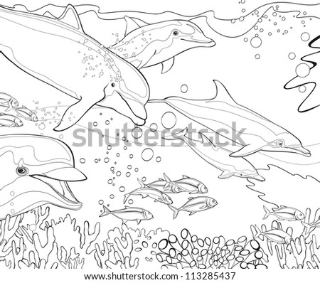 The coloring book - dolphins - coral reef - illustration for the children - stock photo