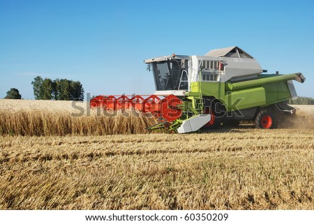 The combine mows wheat in a field - stock photo