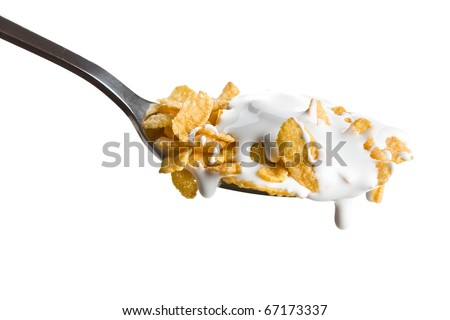 the cornflakes on the spoon with milk - stock photo