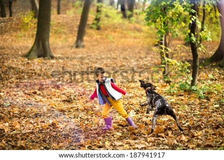 The cute brown dog play with boy in the park - stock photo