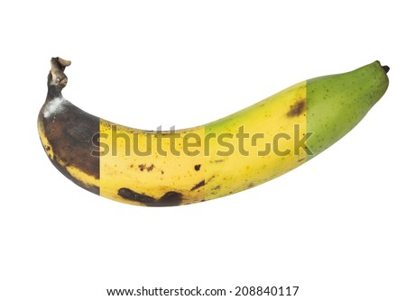 The cycle life of banana  on white background - stock photo